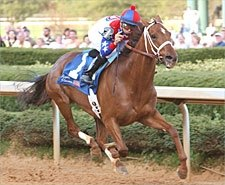 Azeri Back in Business in Apple Blossom