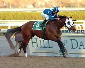 Daaher Retired, to Stand at Nashwan Stud