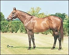 Leading Broodmare Sire 2004: Dixieland Band