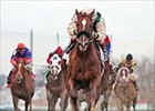Congaree Likely for Donn Handicap