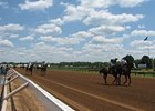 Racetracks Fire Back in ADW Conflict