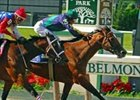 Grade I Winner Bushfire Retired
