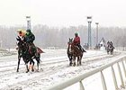 Inclement Weather Halts Live Races
