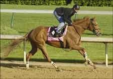 Ermine and Press Camp Works Toward Oaks Start