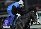 Courageous Cat Faces Goldikova Again in Mile