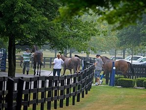 Uncertain Times Concern F-T July Consignors