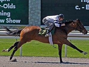 Keeneland April Sale: Horses to Watch
