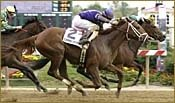 Belong to Sea Wins Miss Preakness Stakes, Remains Undefeated