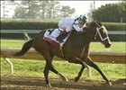 Sis City Shoots to Top of Oaks Odds at 5-2