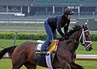 Rule Out of Kentucky Derby Picture