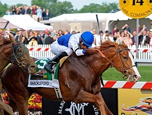 Shackleford Tames Animal Kingdom in Preakness