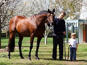 Top International Sire Royal Academy Dies