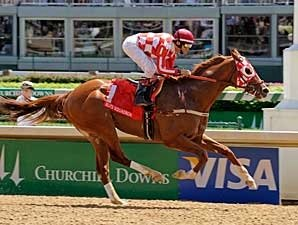 Top Sprinter Elite Squadron Retired