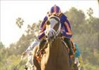 Rags to Riches Won't Run in Santa Anita Derby