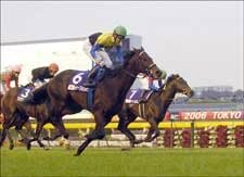 Deep Impact Makes Final Start in Arima Kinen