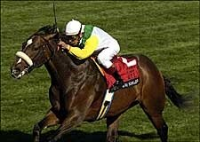 Grade I Winner Artie Schiller Retired to Hurricane Hall