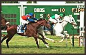 Monmouth Park Race Report: Finished Business