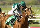 Wonderful Luck, Thoroughly Win Juvenile Stakes
