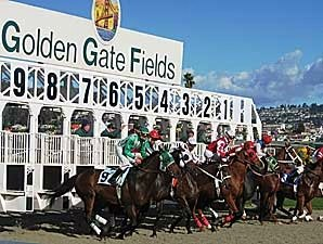 Tapeta Gives Golden Gate a Boost