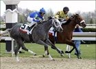 Christmas Kid, Cotton Blossom Chase Acorn Victory