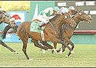 Frankel Record Rolls On Continuously