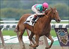 Beldame All Sightseek; Frankel Sets Mark