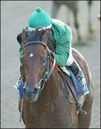 Mineshaft Makes Case in JC Gold Cup; May Be Retired