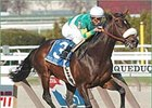 Pico Central Returns in Bing Crosby; Greg's Gold Also in Field