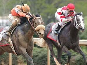 Ky. Derby Trail: Old Fashioned Blunder
