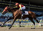 Royally-bred 'Leopard' Eyes Queen's Plate