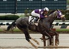 Tasteyville Will Miss Cigar Mile