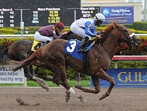 Dialed In Gets Wrong Number; Stablemate Wins