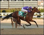New Farm, Perkins Earn Second Stakes Win of Weekend with Forest Heiress