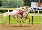 Rare White Horse Third in Career Debut