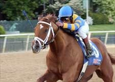 Happy Oaklawn Handicap Homecoming for Lawyer Ron