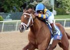 Pletcher Pins Hopes on Talented Duo in Met Mile
