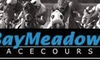 Could Pleasanton Replace Bay Meadows?