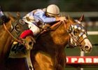 Stormello Streaks to Hollywood Futurity Win