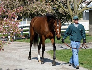 Keeneland  April: More of the Same?
