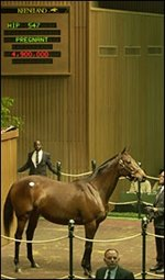 Keeneland November Sale Concludes with Record Average