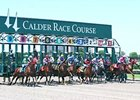 Calder Hoping for Strong, Peaceful 2012