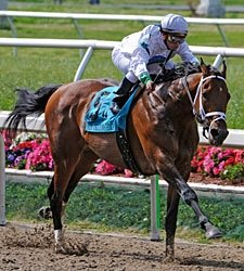 Overbrook's Battle Plan Retired