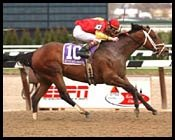 Affirmed Success Grade I Winner at Eight