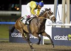 Mahbooba Seeks to Add UAE Oaks to Resume