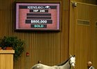 Wickedly Perfect Brings $800,000