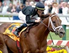 New York Champ Friendly Island Retired