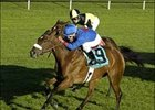 Vacare Seeks Redemption in New York Stakes
