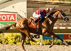Smiling Tiger Faces Baffert Trio in O'Brien