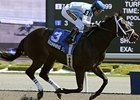 Stunning Stag, Exhi Clash in Eclipse Stakes