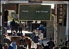 Keeneland Sale Finishing With a Kick